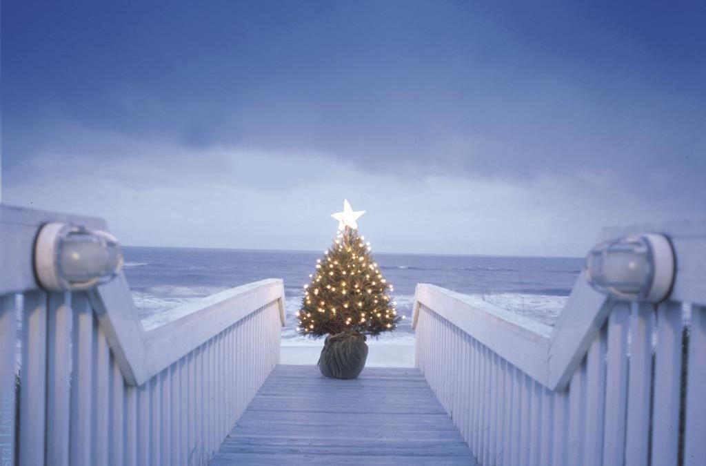 Uratuj życie sąsiadowi w Święta